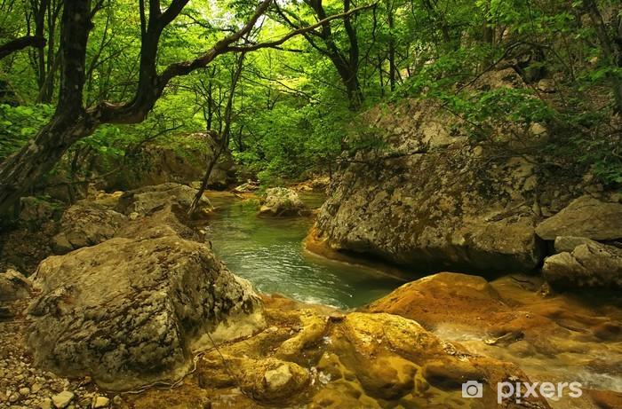 Naklejka Pixerstick Rzeka w lesie - Tematy
