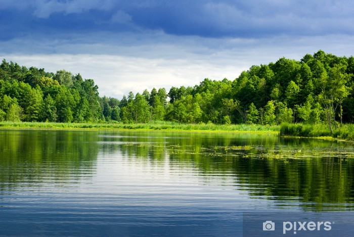 Lake and forest. Pixerstick Sticker - Themes