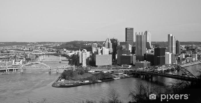 Carta da Parati in Vinile Pittsburgh Down Town - Stili