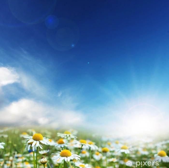 Sticker Pixerstick Fleurs de marguerite et journée ensoleillée. - Saisons