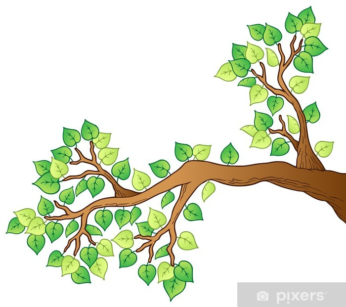 Cartoon Tree Branch With Leaves 1 Poster Pixers We Live To Change