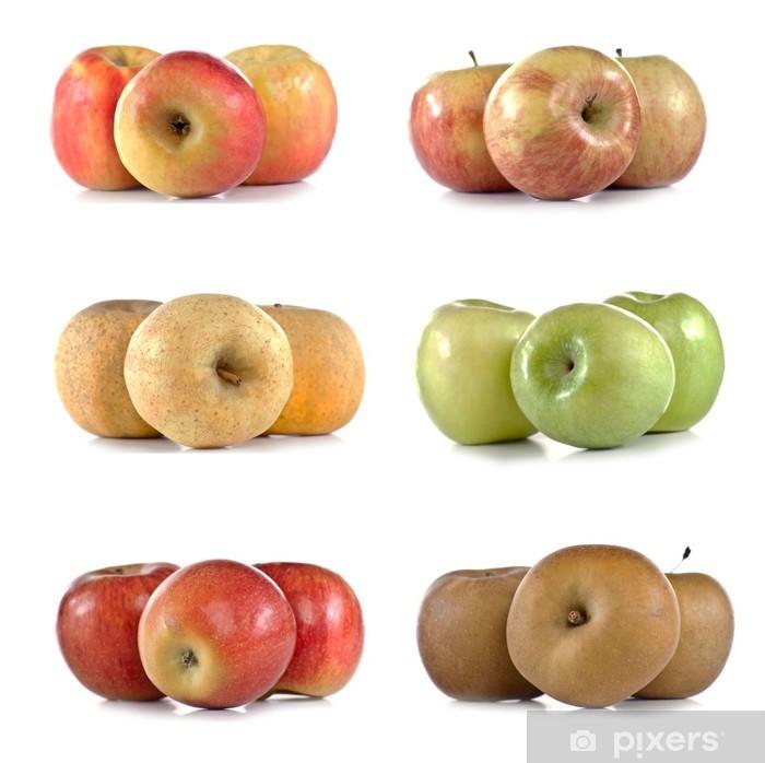 Fototapeta winylowa Różnych odmian jabłek - Owoce