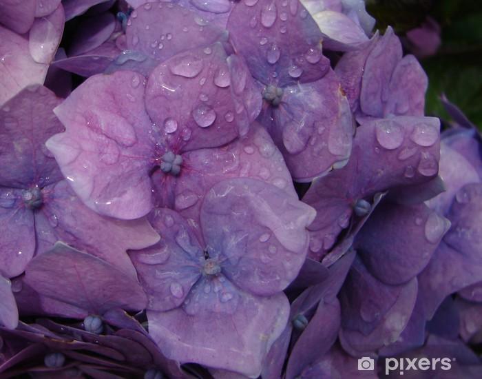 Garden Rain Vinyl Wall Mural - Flowers