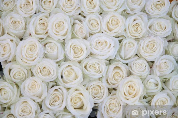 Vinyl Fotobehang Groep van witte rozen na een regendouche - Thema's