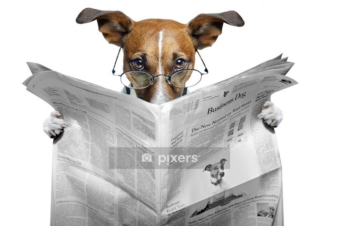 dog reading a newspaper Wall Decal - Themes
