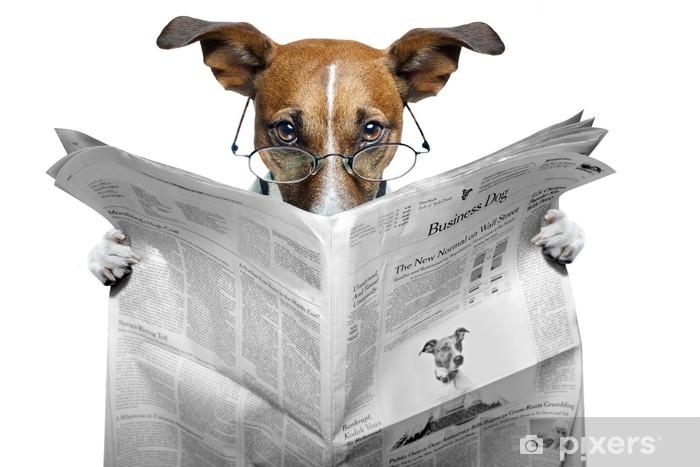 Vinyl Fotobehang Hond lezen van een krant - Thema's