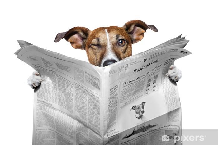 Nálepka Pixerstick Pes čtení novin a mrkl - Nálepka na stěny