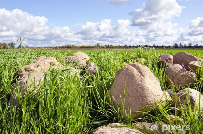 Fototapeta winylowa Kamień, stosu, stos trawy przestrzennego dziedzinie rolnictwa - Rolnictwo