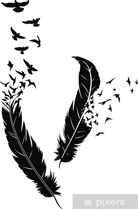 Feather Window & Glass Sticker -