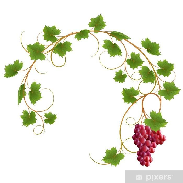 Papier peint vinyle Vigne rouge sur fond blanc - Plantes