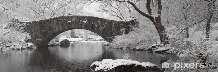 Pixerstick Sticker Tijdens de sneeuwstorm in Central Park, New York city - Thema's