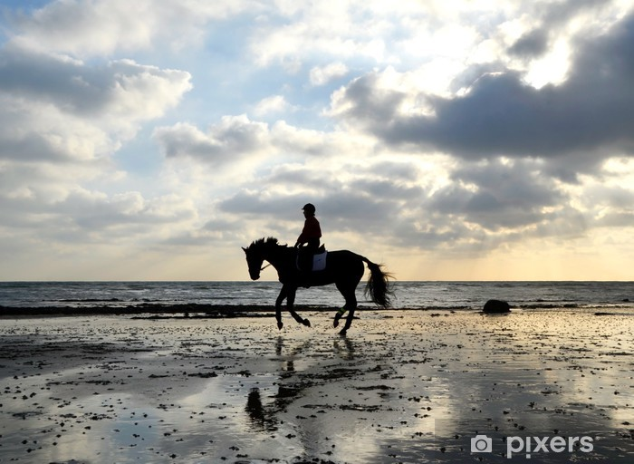 Mural de Parede em Vinil Silhouette of Horse Rider Galloping on the Beach - Desportos Individuais