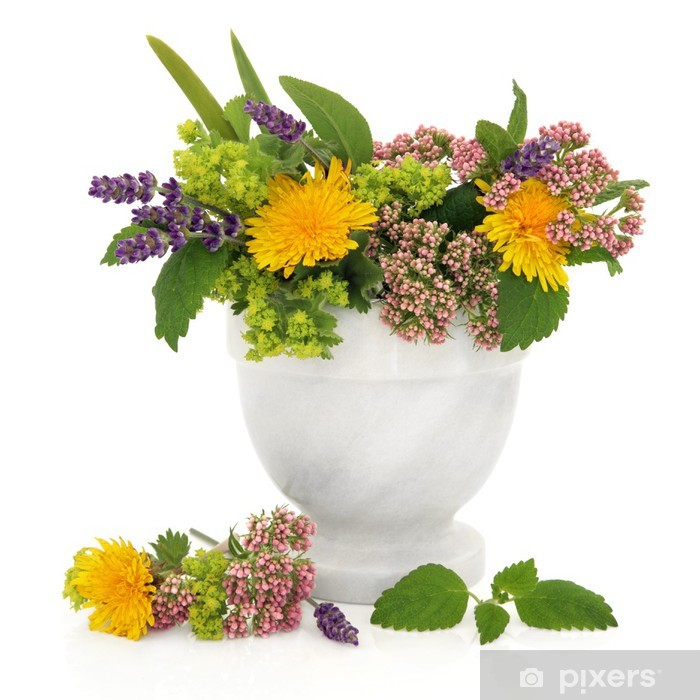 Healing Herbs and Flowers Pixerstick Sticker - Health and Medicine