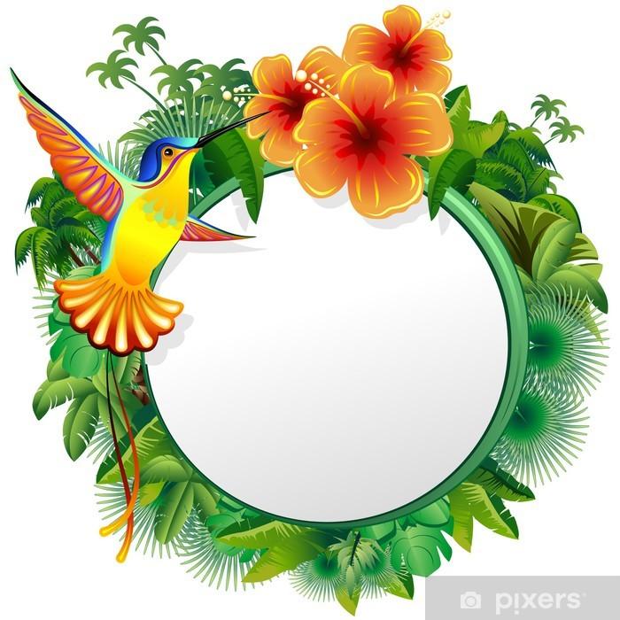 Colibri Biglietto Esotico Hummingbord Hibiscus Jungle Vector Wall