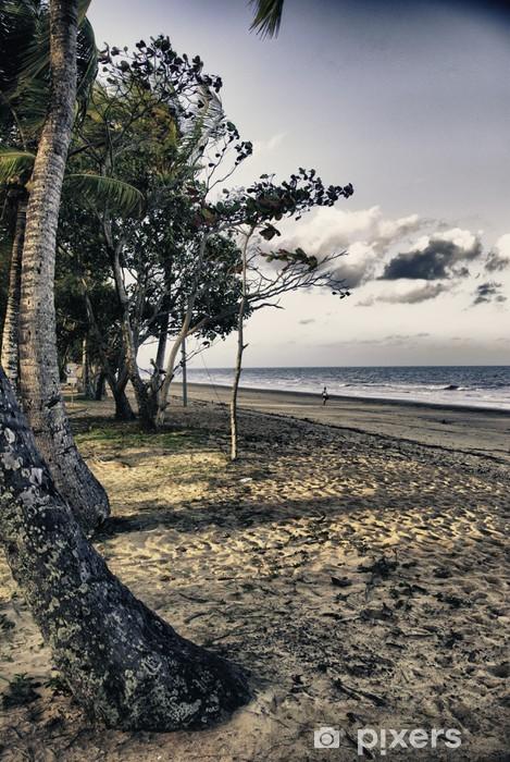 Papier peint vinyle La végétation du Queensland, en Australie - Vacances