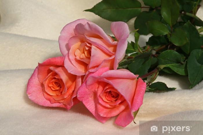 Nálepka Pixerstick Rosenstrauss, 3 Rosen, rosa Rosen, blumenstrauss - Květiny