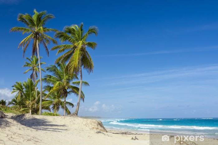 Naklejka Pixerstick Palmy na tropikalnej plaży, Dominikana - Palmy