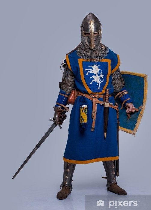 Medieval knight on grey background. Vinyl Wall Mural - Knights
