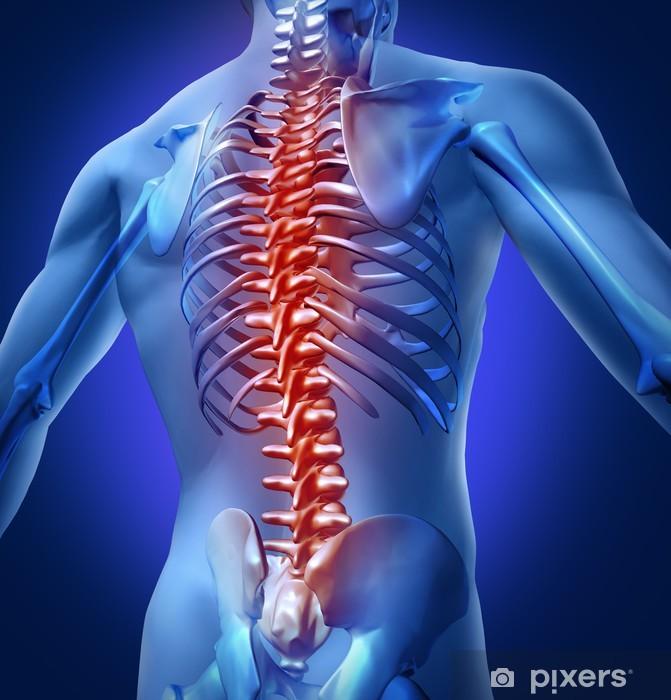 Vinyl Fotobehang Human-Back-Pain - Gezondheid en Geneeskunde