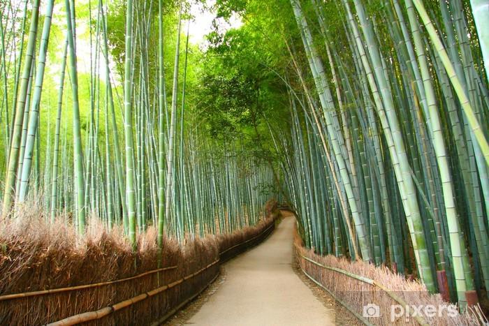 Papier peint vinyle Foret de bambou à Kyoto - Thèmes