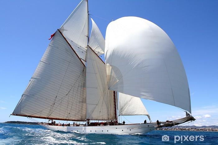 Fotomural Estándar Espíritu de equipo team spirit velero, mar, océano vela regata - Barcos