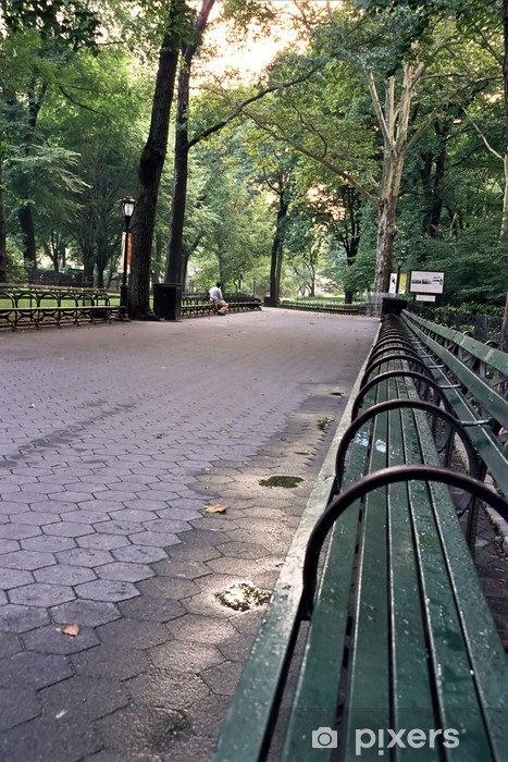 Central Park Benches Wall Mural Pixers We Live To Change