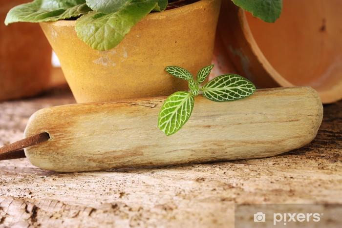 Vinyl-Fototapete Holzschildchen für Deine grüne Botschaft - Haus und Garten