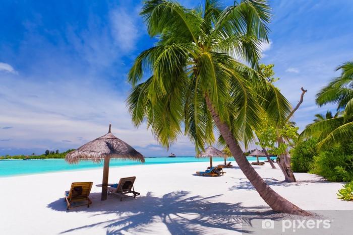 Fototapeta winylowa Leżaki pod palmami na tropikalnej plaży - Palmy