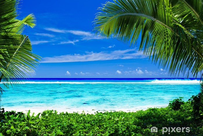Deserted tropical beach framed by palm trees Pixerstick Sticker - Palm trees