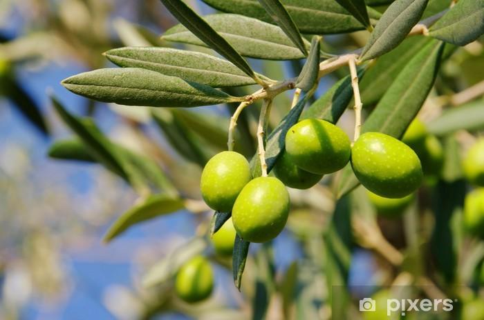 Sticker Pixerstick Olive 44 - Europe