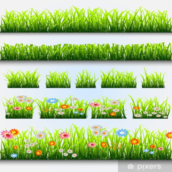 Plakat Trawa i kwiaty - Pory roku