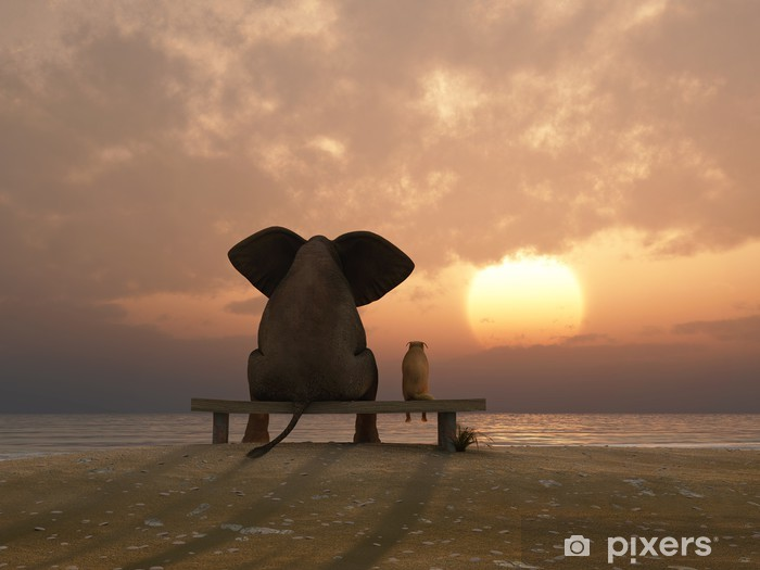elephant and dog sit on a summer beach Vinyl Wall Mural - Destinations