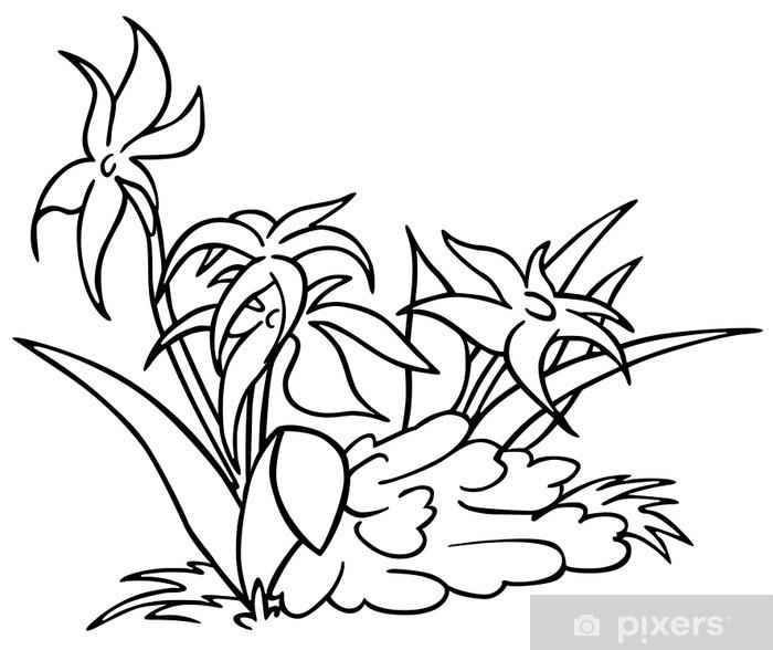 Papier Peint Fleurs Dessin Animé Noir Et Blanc Illustration