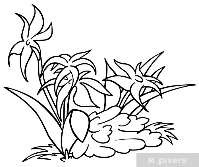 Flowers Black And White Cartoon Illustration Wall Mural Pixers
