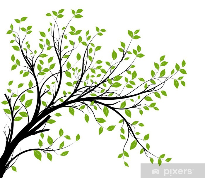 vector set - green decorative branch and leaves Pixerstick Sticker - Styles