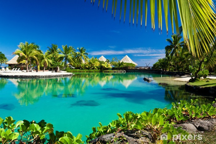 Tropical resort with a green lagoon and palm trees Self-Adhesive Wall Mural - Palm trees