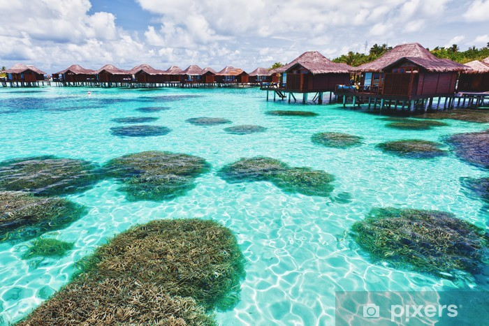 Over water bungalows and lagoon with coral Vinyl Wall Mural - Holidays