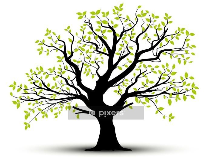 Vektori asettaa - koriste puu ja vihreät lehdet Seinätarra - Styles