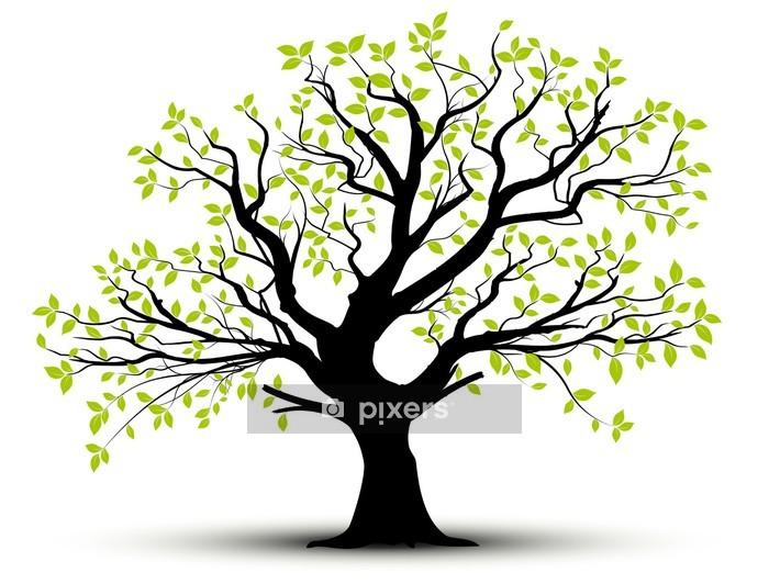 vector set - decorative tree and green leaves Wall Decal - Styles