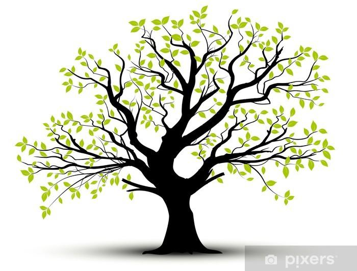 Fototapeta winylowa Wektor zestaw - dekoracyjne drzewa i zielone liście - Style