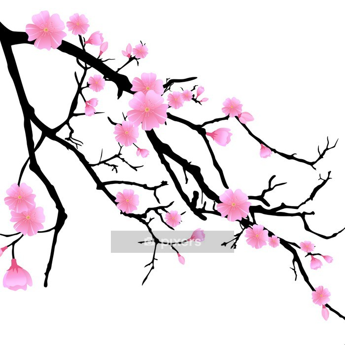 Ast mit Kirschblüten Wall Decal - Wall decals