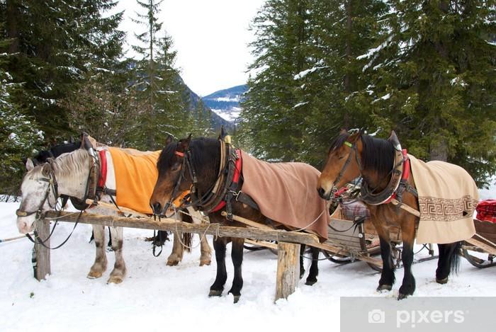 Papier peint vinyle Chevaux dans la neige - Vacances