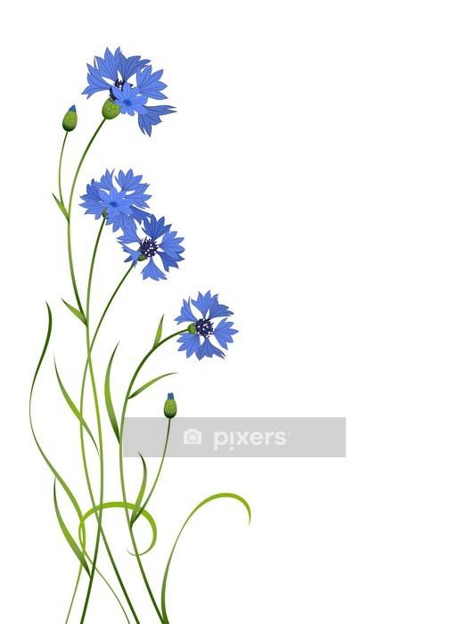 Vinilo para Pared Aciano azul patrón ramo aislado - Artes y creación