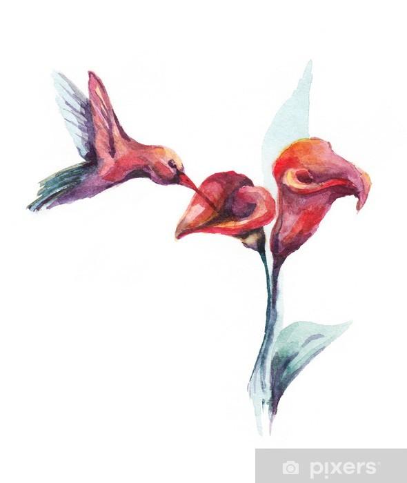 Fotomural Acuarela colibrí y la flor • Pixers® - Vivimos para cambiar
