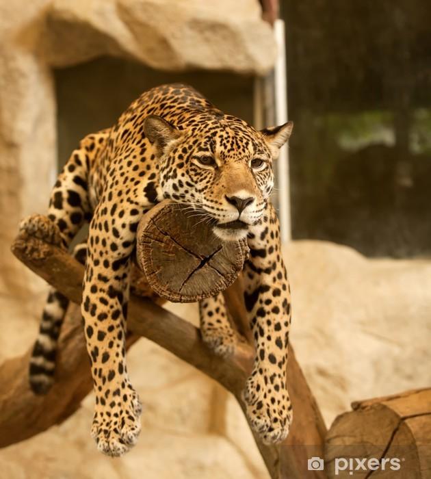 Pixerstick Sticker Leopard (Tiger) - Thema's