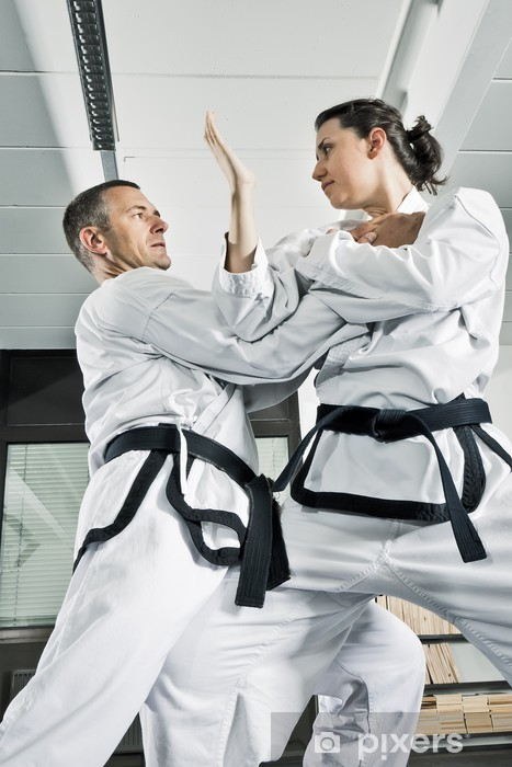 Sticker Pixerstick Martial arts combattants - Thèmes