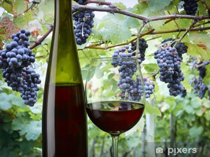Adesivo Pixerstick Vino rosso - Temi