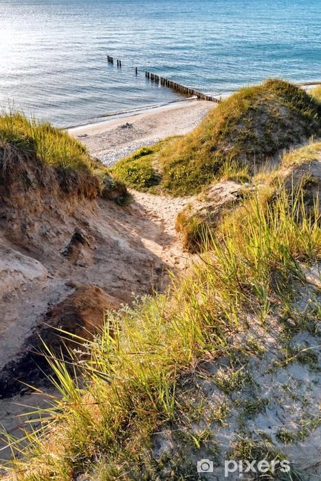 Fototapeta samoprzylepna Baltic wydmach - Wakacje