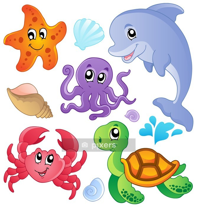 Muursticker Zee vissen en dieren collectie 3 - Muursticker