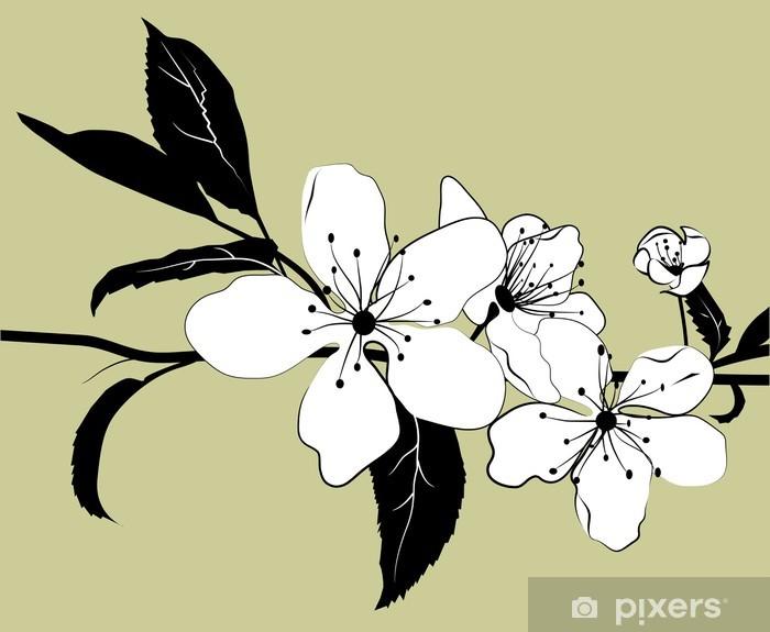 Vinyl-Fototapete Blühender Zweig der Kirsche - Bäume